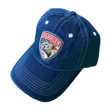 florida panthers patriotic cap