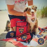 Florida Panthers Dog Bandana