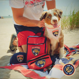 Florida Panthers Gradient Lunch Bag