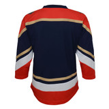 Personalized (Custom Name/#) Florida Panthers Youth Special Edition Jersey