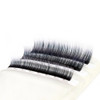 Frosted Ombre Color Lashes