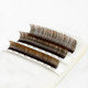 Mocha Brown Combination Lash Tray (8-14mm)