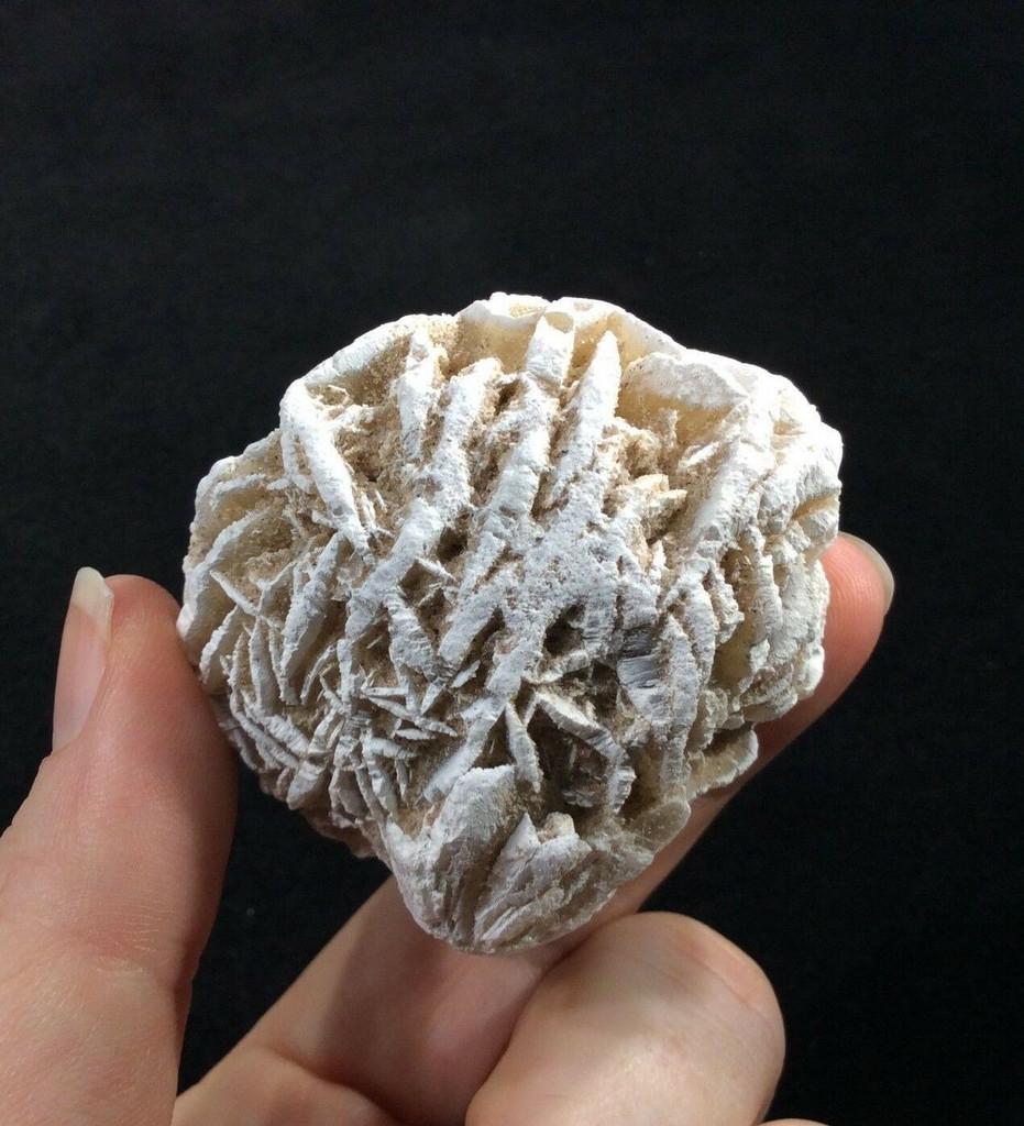 Selenite Desert Rose Specimen 151125 Stone of Mental Clarity Crystal Healing