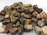 One (1) Tumbled Variety Petrified Wood ##2 Stone of Transformation Metaphysical