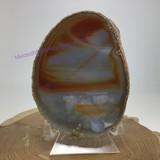Agate Carnelian Sliced Slab 2008-020 4.42 inch One Side Polished Specimen Minera