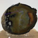 Banded Agate Sliced Slab 2008-025 4.79 inch One Side Polished Face Specimen Mine