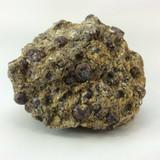 Rough Garnet in Mica Specimen Stone of Health Metaphysical