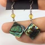 Beautiful Abalone Shell Earrings 170905 Metaphysical Spiritual Healing