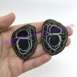 MeldedMind078 Sliced Septarian Nodule 47mm Morocco Specimen Mineral Decor