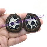 MeldedMind080 Sliced Septarian Nodule 34mm Morocco Specimen Mineral Decor
