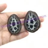 MeldedMind082 Sliced Septarian Nodule 45mm Morocco Specimen Mineral Decor