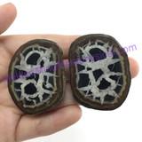 MeldedMind086 Sliced Septarian Nodule 42mm Morocco Specimen Mineral Decor