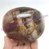 MeldedMind162 Petrified Wood Massage Stone 82mm Massage Therapy Fossil Stone Holisitic