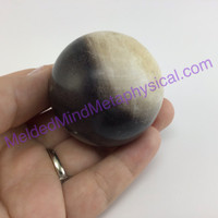 MeldedMind Polished Petrified Wood Sphere 50mm Natural Fossil Agatized Indonesia 293