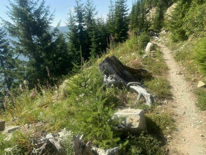 hansen-trail.jpg