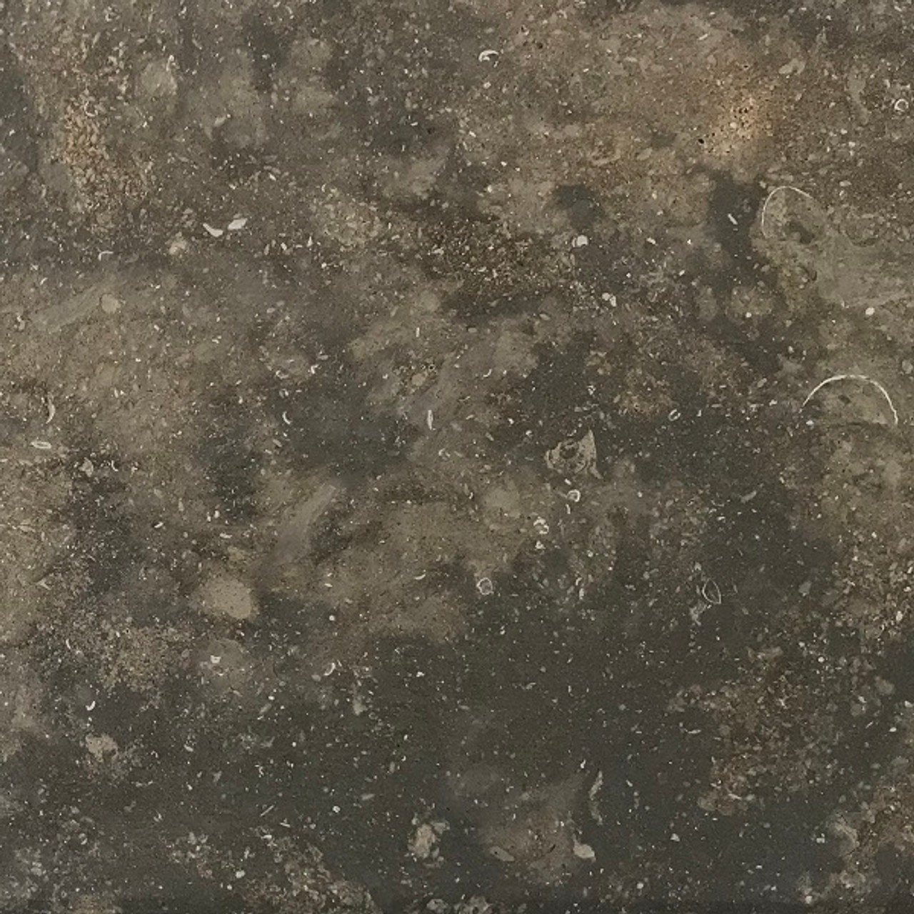 Plaza gray limestone 240 grit honed finish