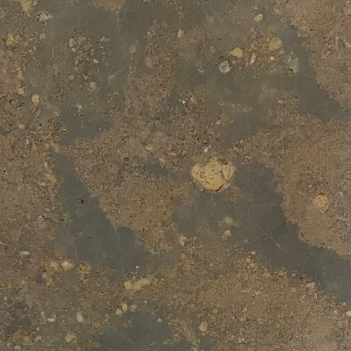 Lueders brown honed limestone sample
