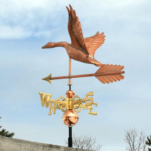 copper goose left side