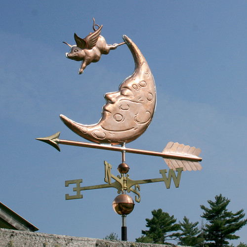 Flying Pig over the Moon 801