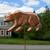 Bear Garden Stake - 1028