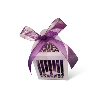 Birdcage Design Favor Box