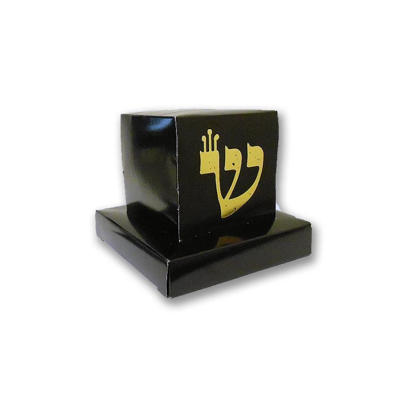 Large Tefillin Box