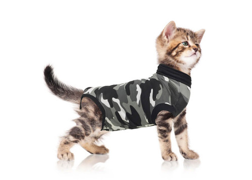 https://d3d71ba2asa5oz.cloudfront.net/12014880/images/suitical-rsuit-cat-xs%20black%20camo.jpg