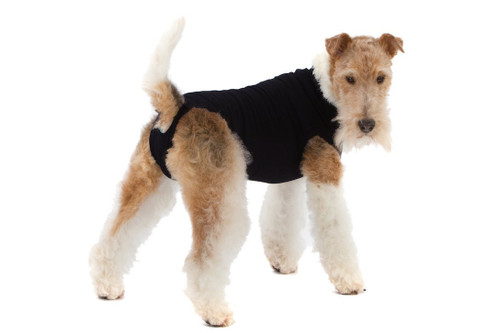 Suitical Recovery Suit for Dogs - Black - size Small+ (plus)