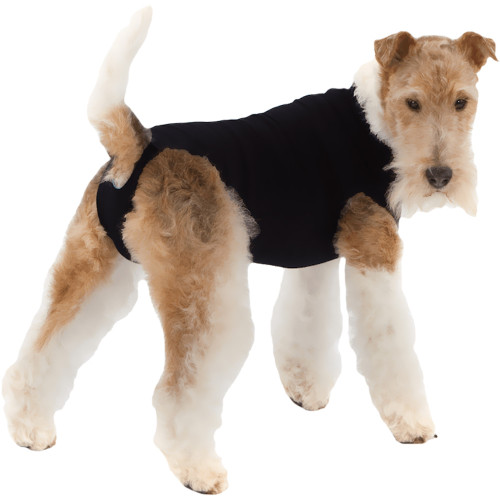 Suitical Recovery Suit for Dogs - Black - size Medium