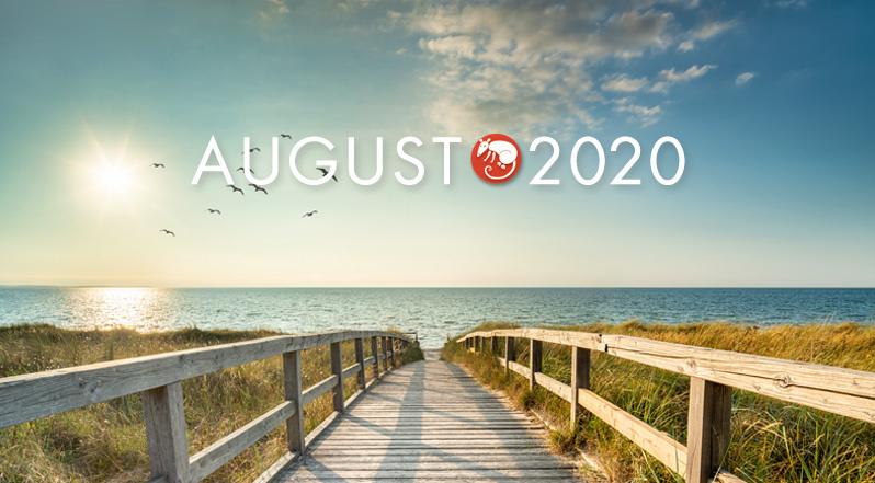 august-landing2020.jpg
