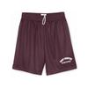 Don Alleson Mesh Shorts *Gym Uniform Piece*