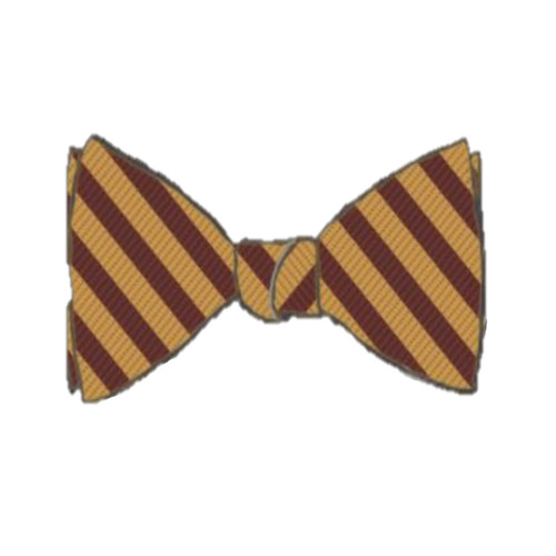 Sesquicentennial Bow Tie