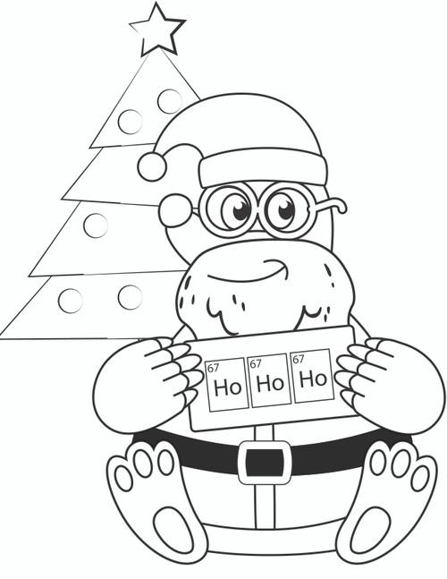 Santa Mole - Level 1