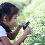 Getting Kids Outside is Key to Stopping Myopia