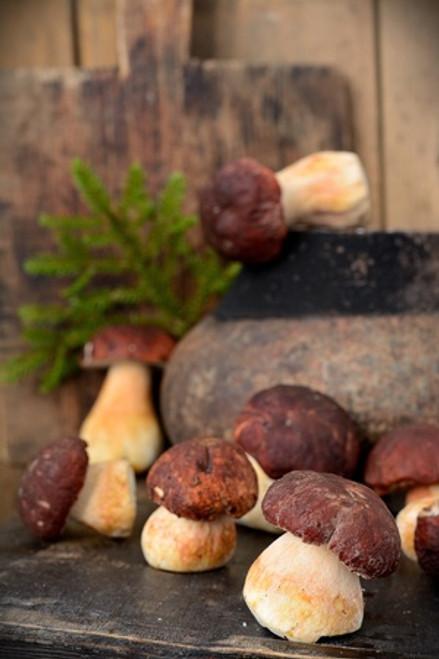 Wild Mushroom and Sage (Infused) Olive Oil