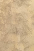 Hand Painted Canvas Backdrop -Textured Light Brown - 9'x12'