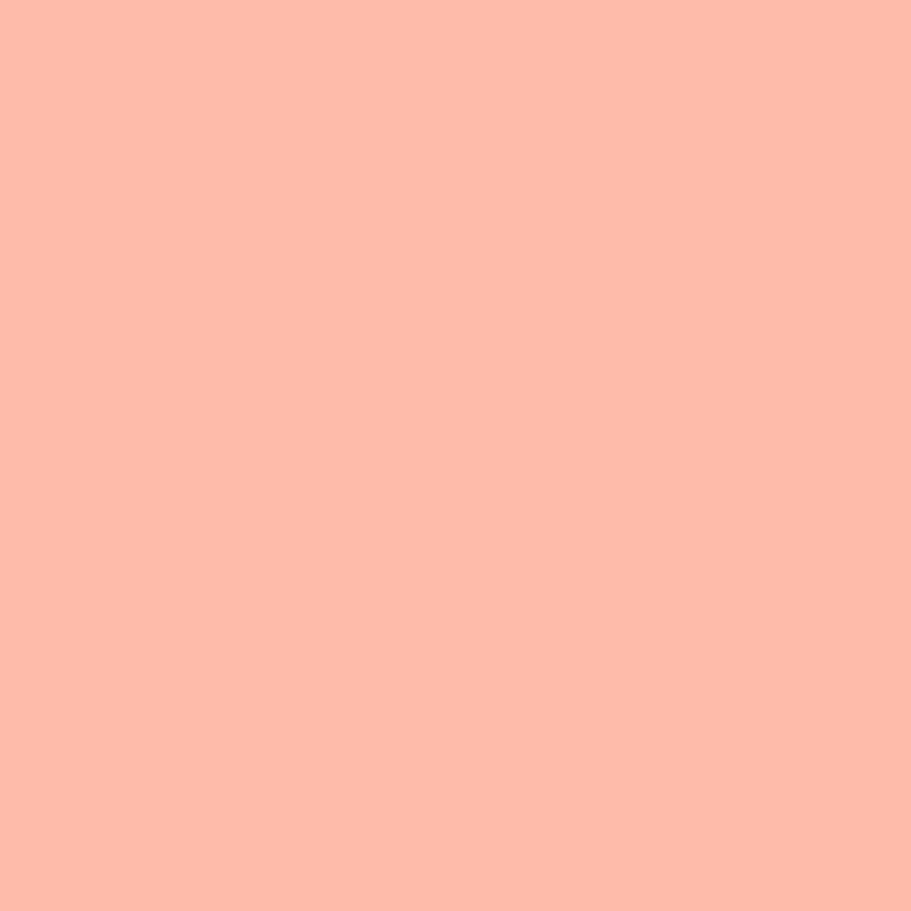 """#0304 Rosco Gels Roscolux Pale Apricot, 20x24"""""""