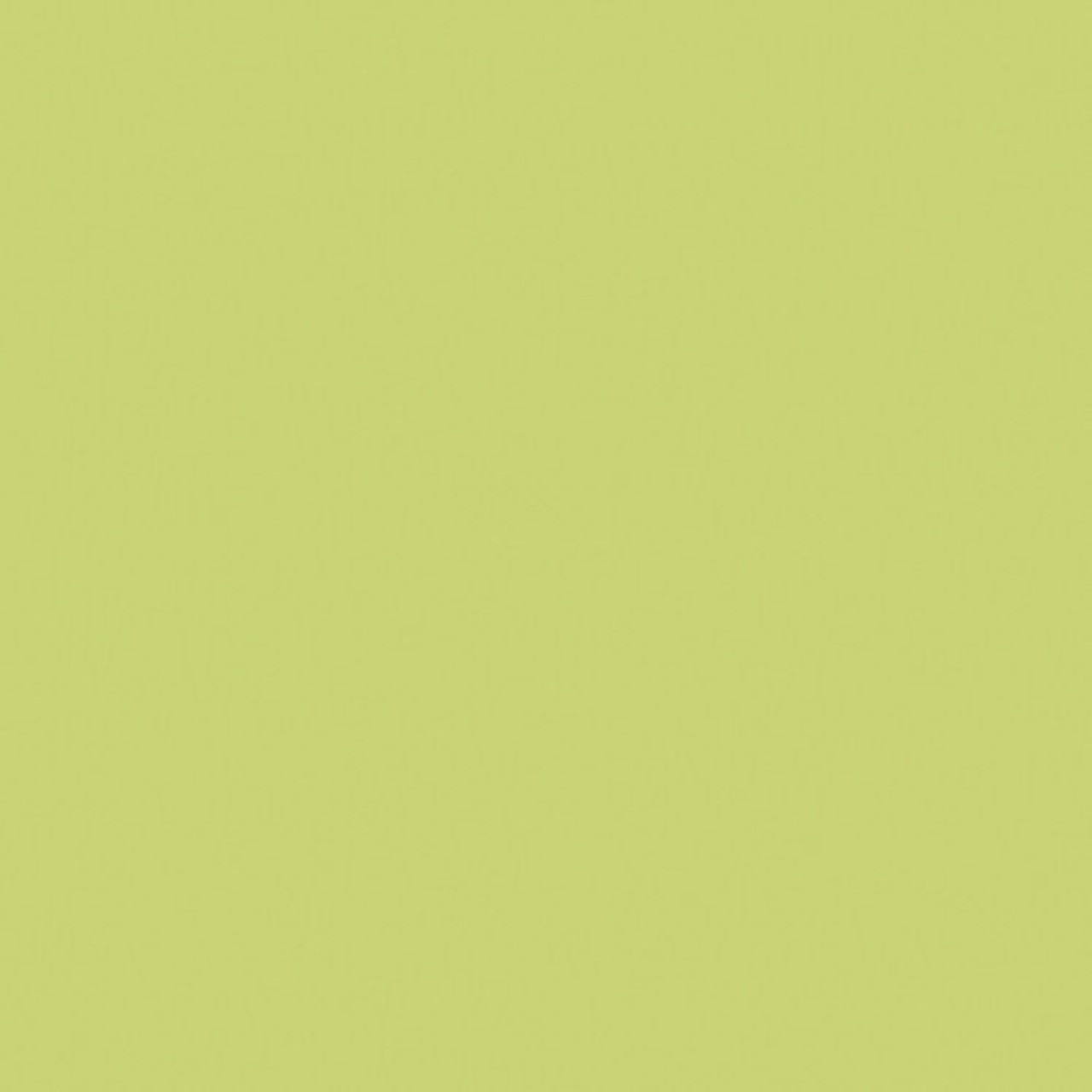 #0388 Rosco Gels Roscolux Gaslight Green, 20x24""
