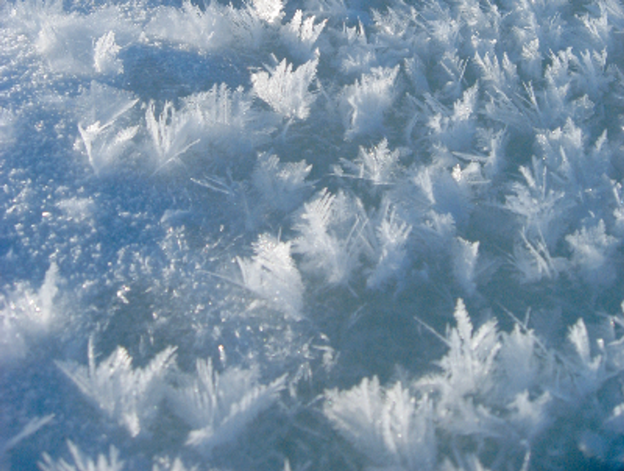 Ice Flowers Effect - 4 oz
