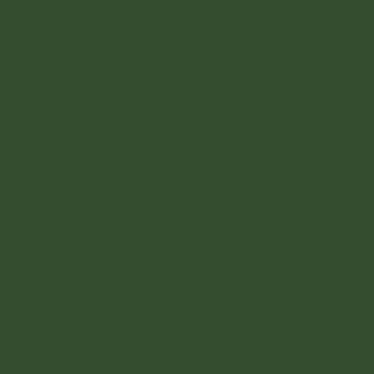 "#0122 Rosco Gels Roscolux Green Diffusion, 20x24"""