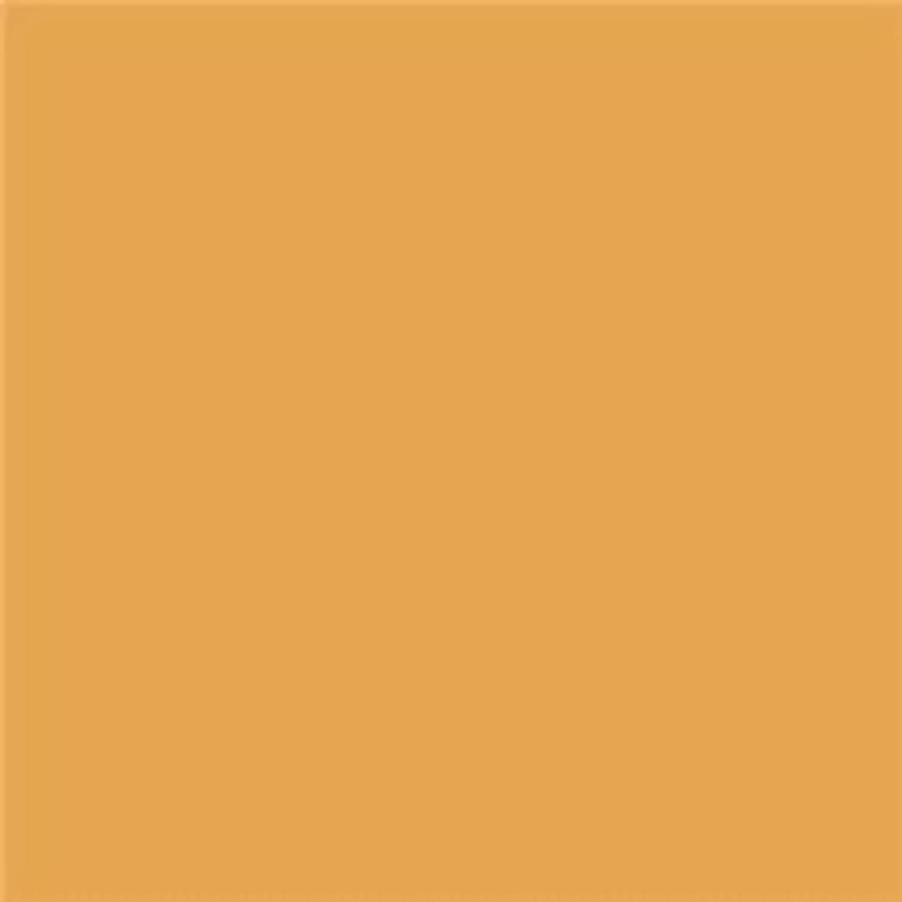 "Lee Filters Rolls #208 Full C.T.Orange + .6 ND 48"" x 25', Gels"