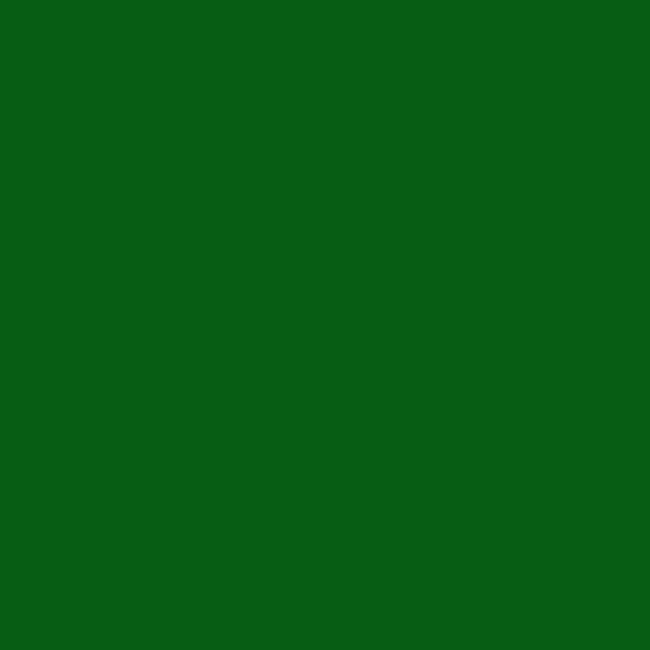 #0091 Rosco Gels Roscolux Primary Green, 20x24""