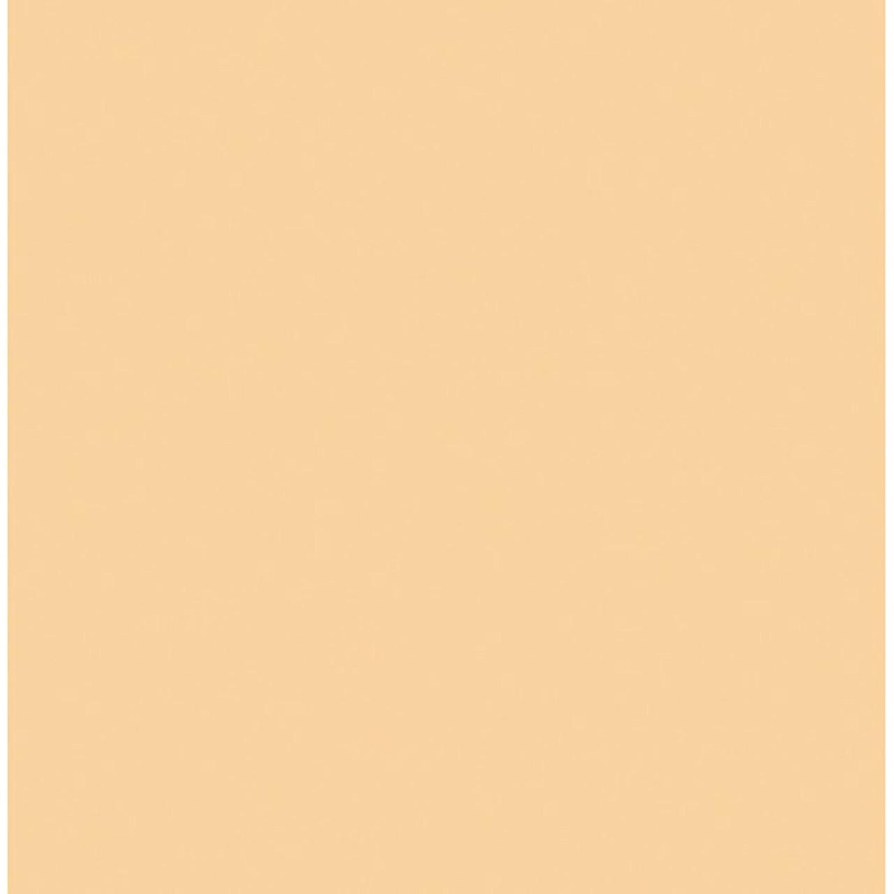 "#3442 Rosco Gels Roscolux Half Straw (1/2 CTS), 20x24"""