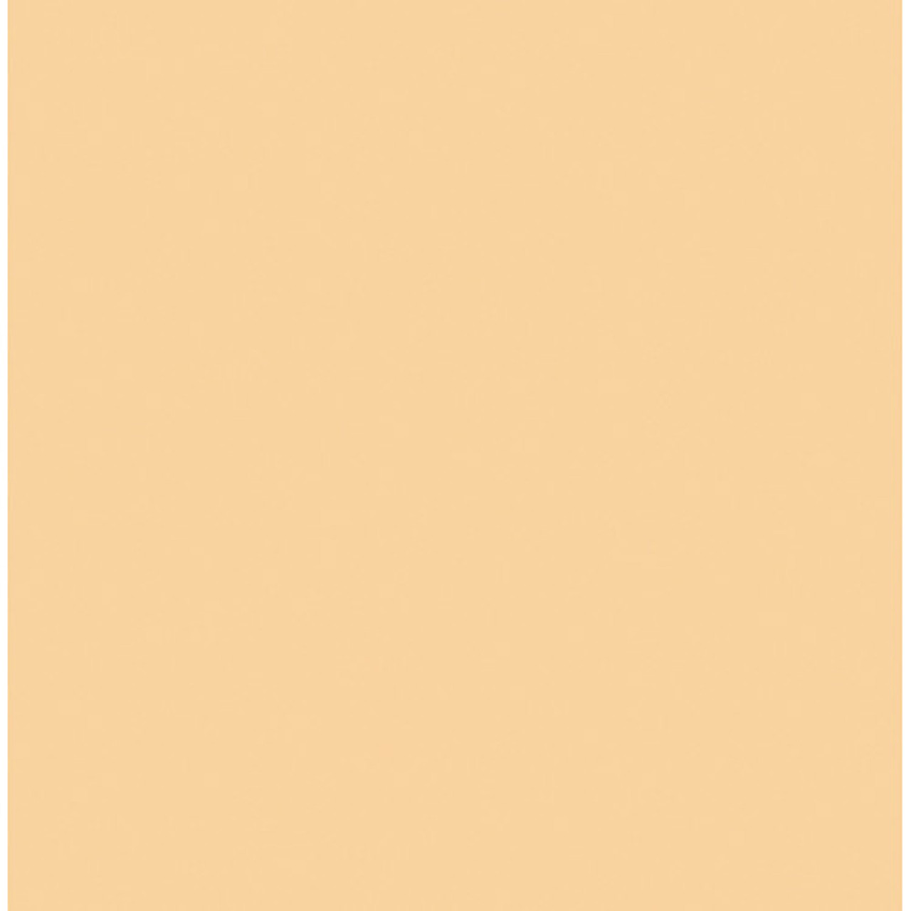 Rosco Cinegel Sheet #3442: Half Straw (1/2 CTS), Gels