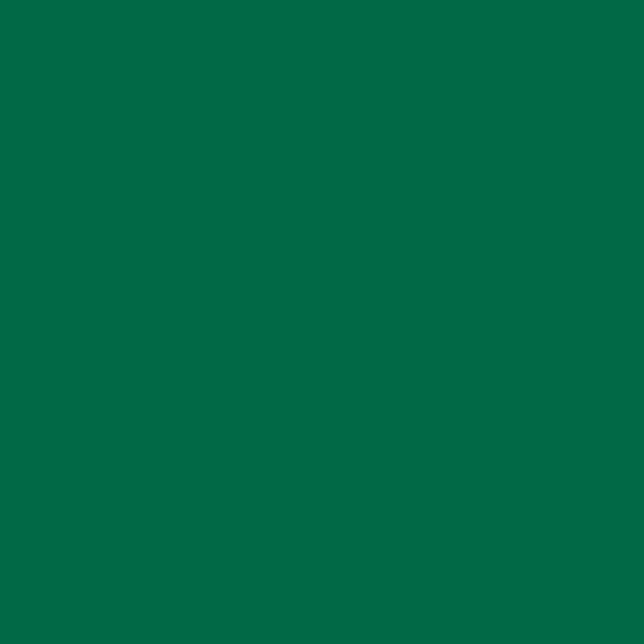 "#2004 Rosco Gels Roscolux Storaro Green, 20x24"""