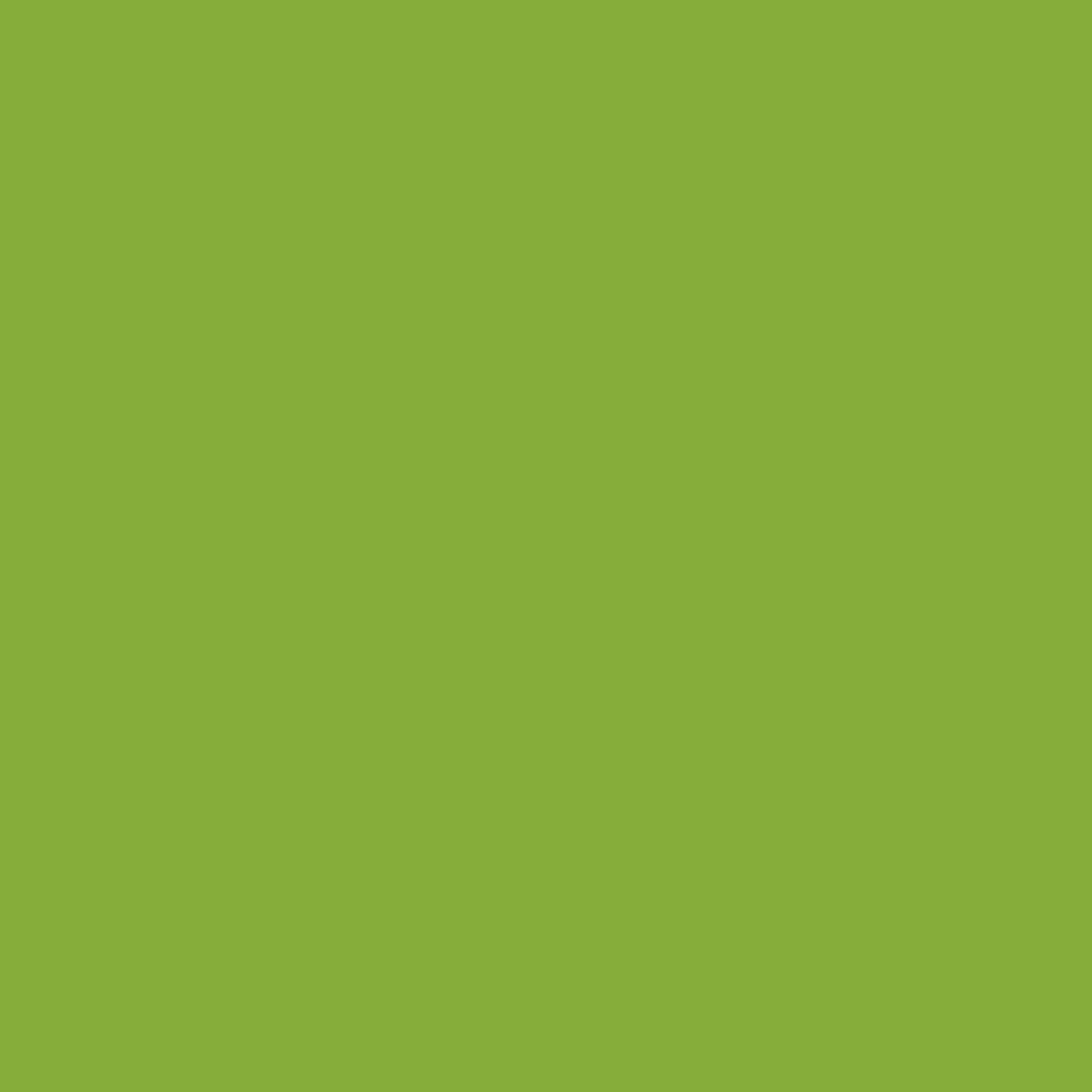 "#0086 Rosco Gels Roscolux Pea Green, 20x24"""