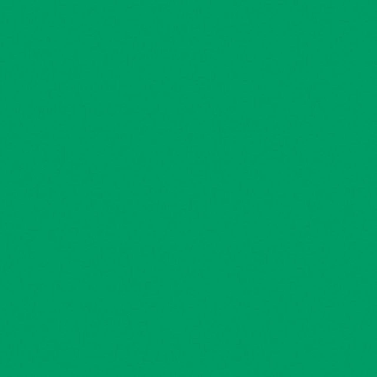 "#0089 Rosco Gels Roscolux Moss Green, 20x24"""