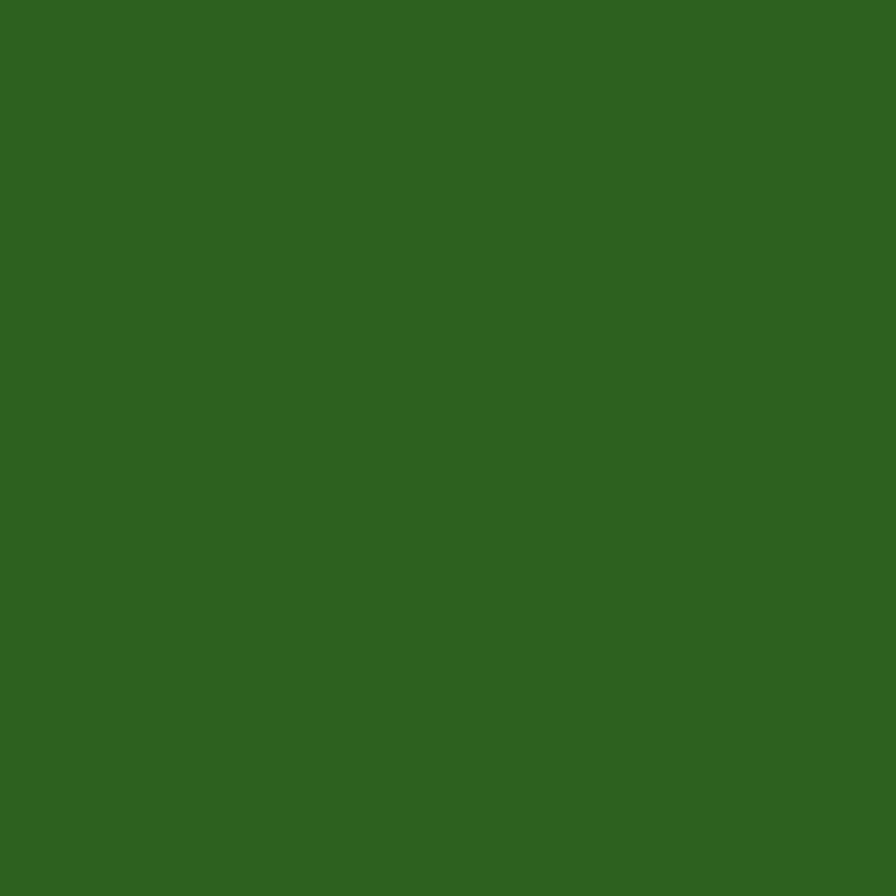 Rosco Calcolor Sheet #4490: 90 Green, Gels