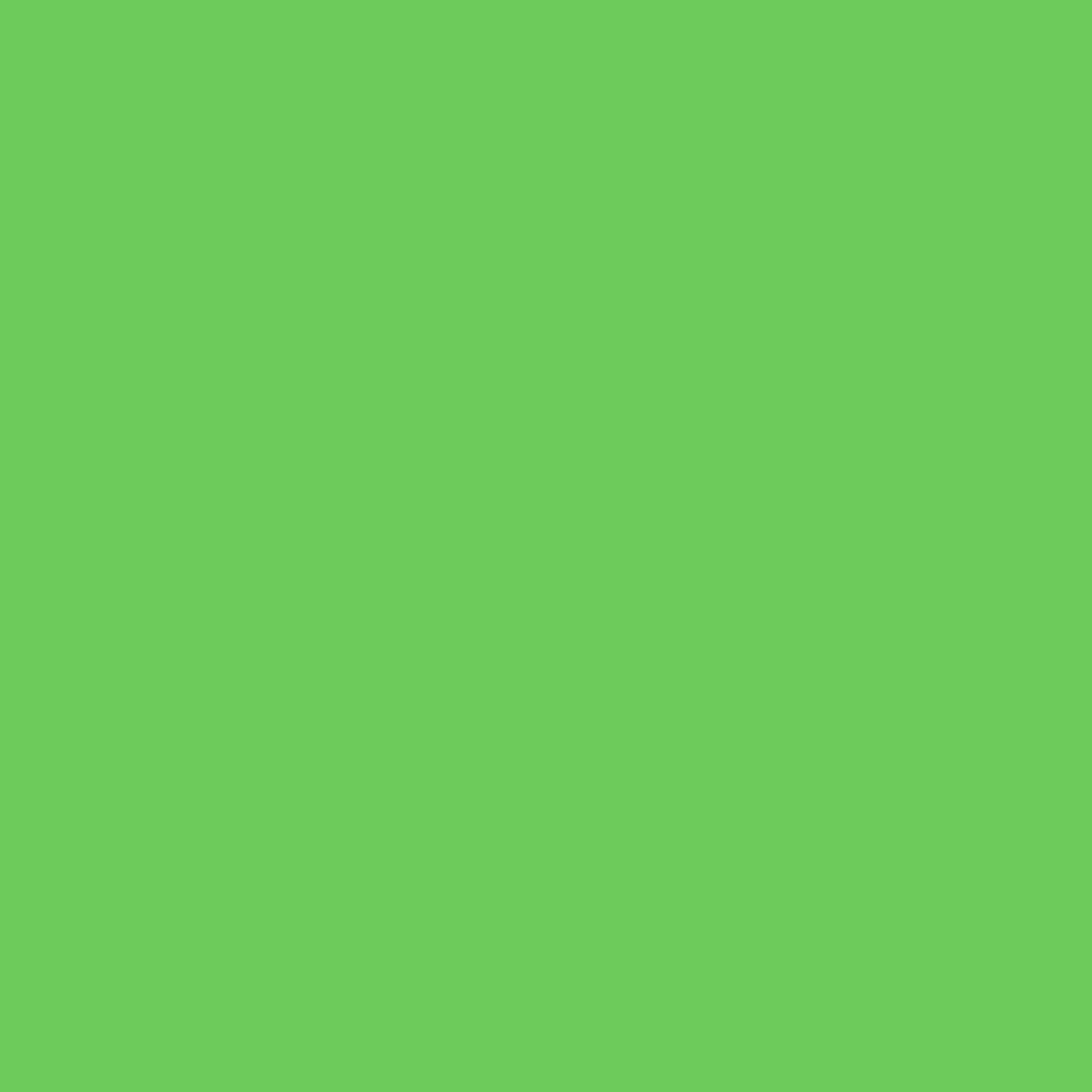Rosco Calcolor Sheet #4460: 60 Green, Gels