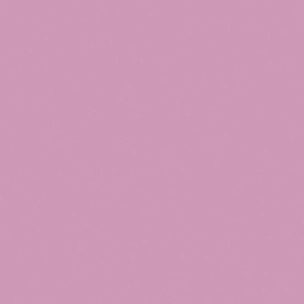 #0038 Rosco Gels Roscolux Light Rose, 20x24""